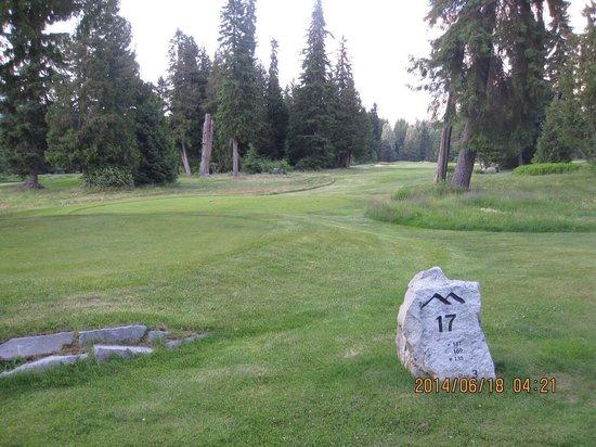 Whistler Golf Club: 結構狭いところもあります。