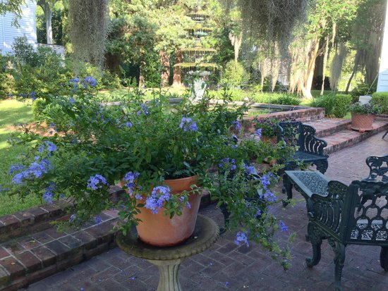 Historic Oak Hill Inn: Back yard seating is comfortable and relaxing