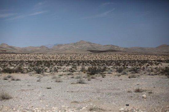 Mojave National Preserve: umidade muito baixa