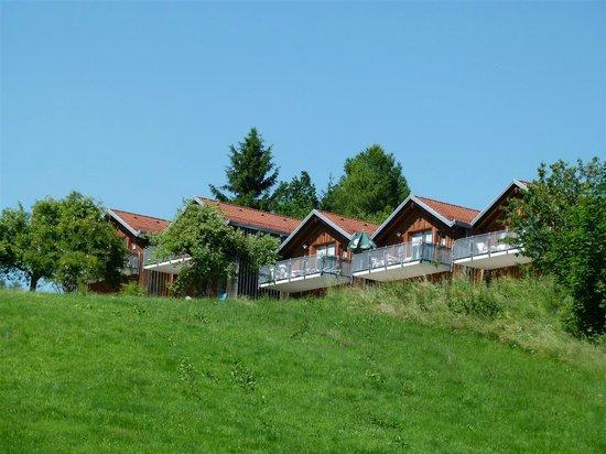 Hotel Bayerischer Wald: Blick vom Tal zur Anlage