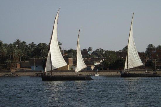 Nile River: Faluka