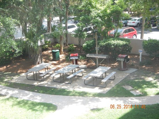Sea Crest Surf & Racquet Club: Picnic Area