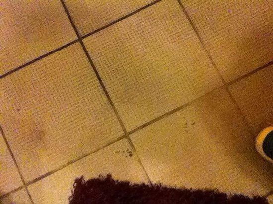 Hotel M68 : Filthy floors
