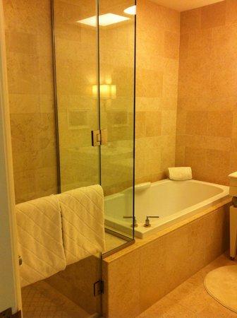 Wynn Las Vegas: shower was unreal