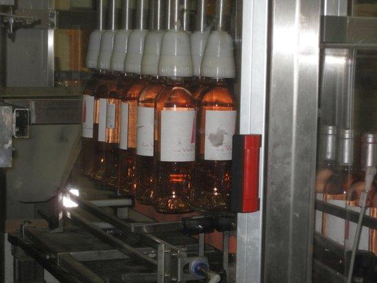 Azur Wine Tours : Bottling at Chateau de Rouet
