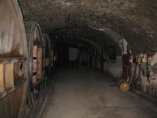 Azur Wine Tours : Caves at Chateau de St-Martin
