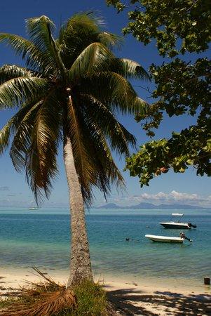 Pension Fare Maeva : Baie d'Avea (Huahine)