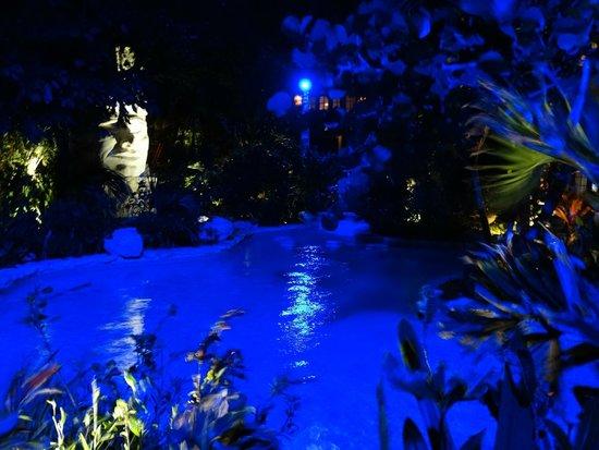 Pineapple Restaurant: Moody blue lights