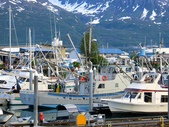 Best Western Valdez Harbor Inn: harbor