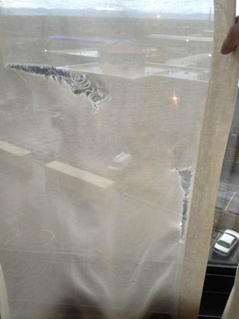 Quality Inn Central Denver: The window coverings in disrepair