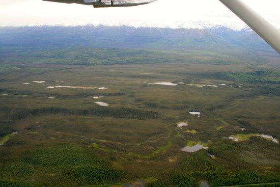 Wrangell Mountain Air - Day Trips: mountain