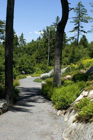 Coastal Maine Botanical Gardens: Haney Hillside Garden