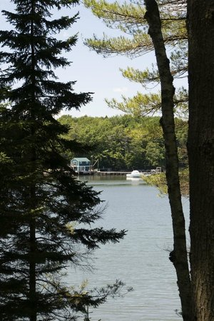 Coastal Maine Botanical Gardens: Looking across the Back River from Shoreland Trail