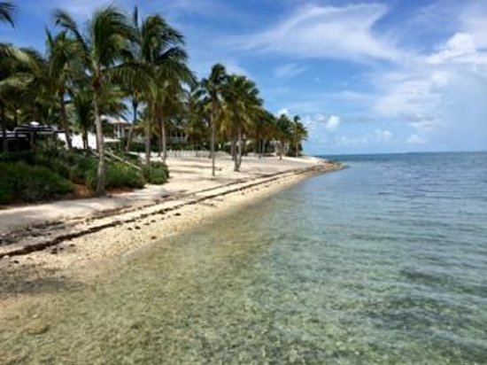 Sunset Key Cottages: beach in front of restaurant - cannot swim here