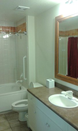 Marriott's Willow Ridge Lodge: Bathroom was fine, just getting worn around the edges