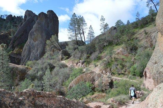 Pinnacles National Park: Balconies cave trail loop