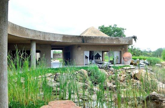 Sabi Sabi Earth Lodge : Le lodge donne directement sur le bush
