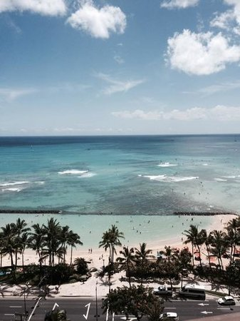 Aston Waikiki Beach Tower : 癒しの空間