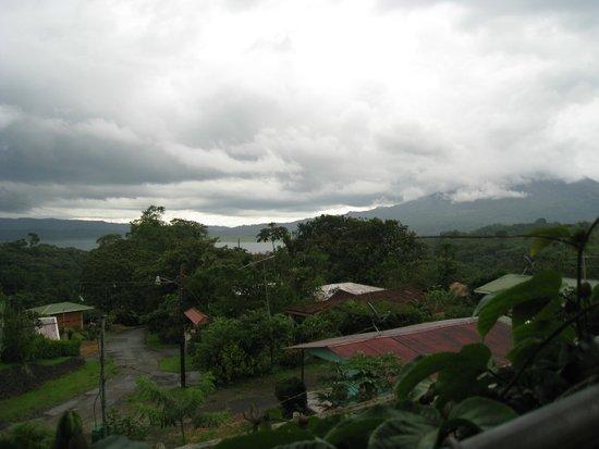 Cabinas Los Tucanes: View from balcony