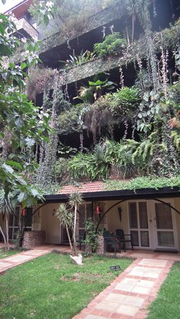 Fairview Hotel : Rooms by the vertical garden