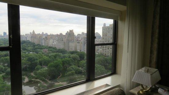 Park Lane Hotel: Vista do Central Park pela janela do hotel