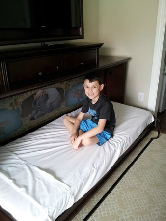 Disney's Grand Floridian Resort & Spa: Pull down bunk under TV - perfect for 8 year old son