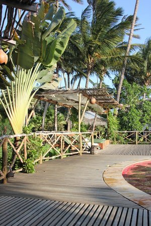 Vila Kalango : piscine