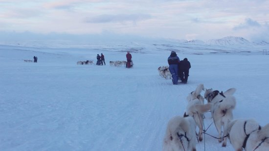 Reykjavik Lights by Keahotels: Sledding Excursion (booked through hotel)