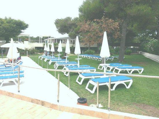 VOI Alimini Resort : Prato antistante piscina