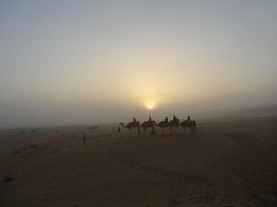 Qasr Al Sarab Desert Resort by Anantara: camel ride