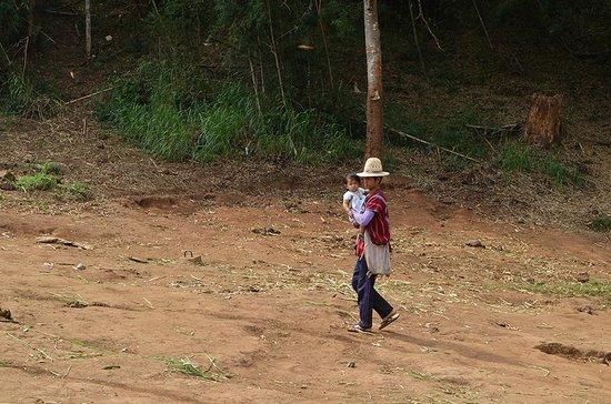 Patara Elephant Farm - Private Tours : Une famille Karen vivant à Patara