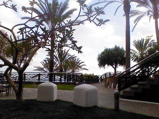 Melia Jardines del Teide: terraza de la discoteca