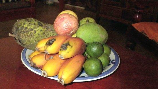 White Villa Guesthouse: Eine Vielfalt tropischer Früchte