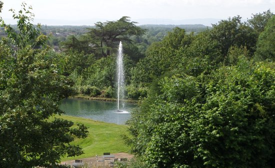 DoubleTree by Hilton Bristol South - Cadbury House : View of hotel grounds