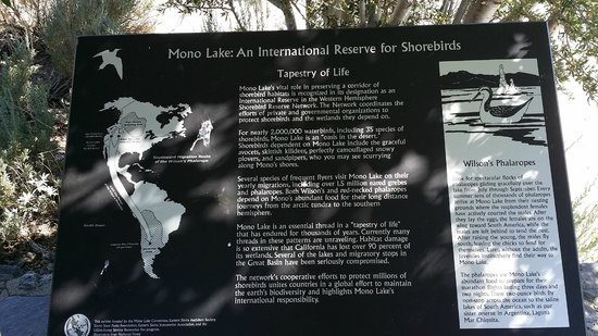 Mono Basin Scenic Area Visitor Center: There are many informative panels on the trails