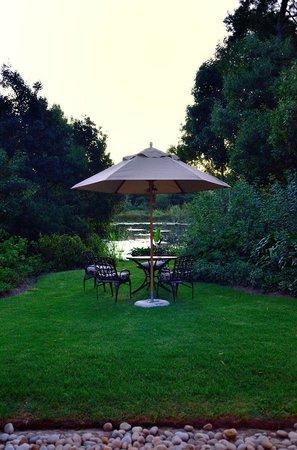 Zinzi Restaurant : La terrasse