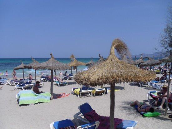 Grupotel Gran Vista & Spa: Beach