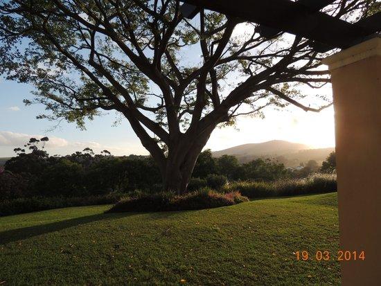 Devon Valley Hotel: Sun set from the patio