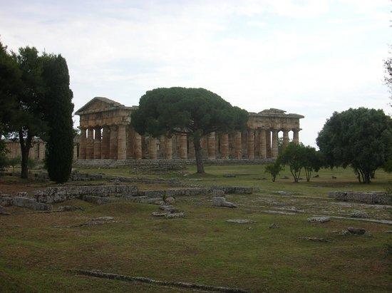 Templi Greci di Paestum: tempio greco, Paestum