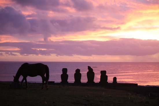 Ahu Tahai: one of the 3000 horses helped make this shot