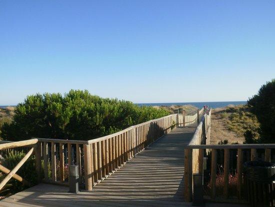Barcelo Punta Umbria Mar: La pasarela a la playa