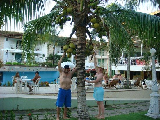 Portal Beach Hotel : Jardins muito bem cuidados