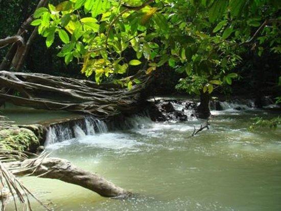 Than Bok Khorani National Park