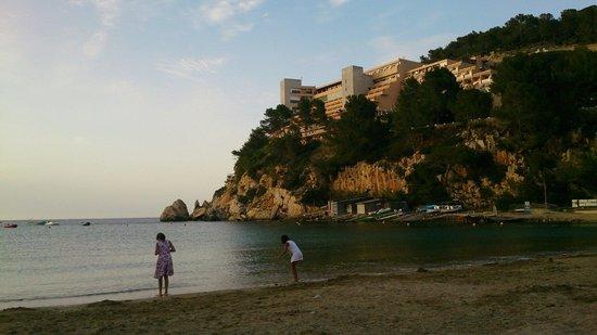 Playa Puerto de San Miguel: What an beautifull beach...