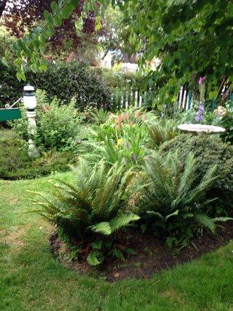 Marifield House B&B: Front garden