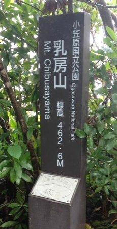 Mt. Chibusa: 山頂