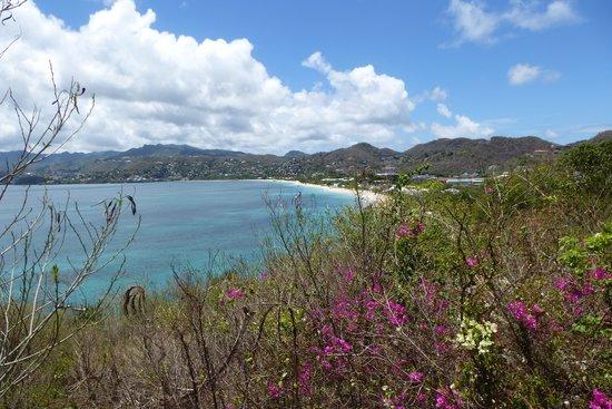 Spice Island Beach Resort: Grand Anse