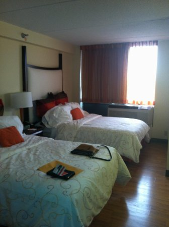 Hotel Indigo Chicago - Vernon Hills: Comfortable Beds
