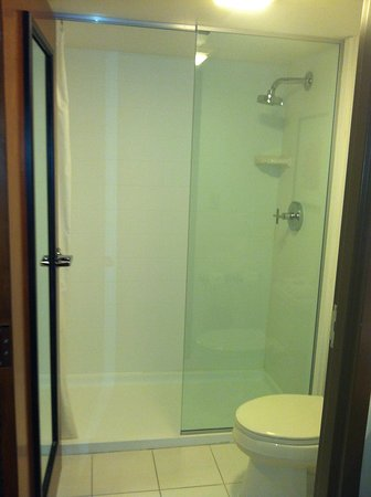 Hotel Indigo Chicago - Vernon Hills: Shower