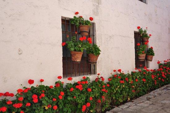Monasterio de Santa Catalina: Calle del monasterio